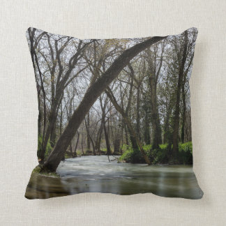 Springtime At Finley Throw Pillow
