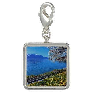 Springtime at Geneva or Leman lake, Montreux, Swit Charms