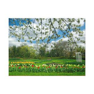 Springtime beauty at Elizabeth Park Canvas Print