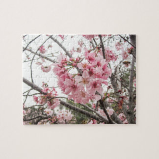 Springtime Cherry Blossoms - Jigsaw Puzzle