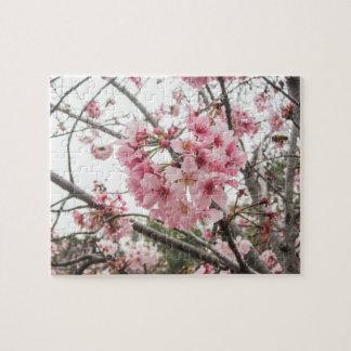Springtime Cherry Blossoms - Puzzle