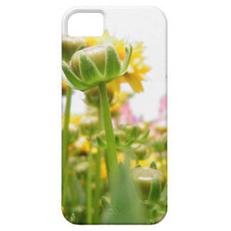 Springtime Flowers in Bloom iPhone 5 Case