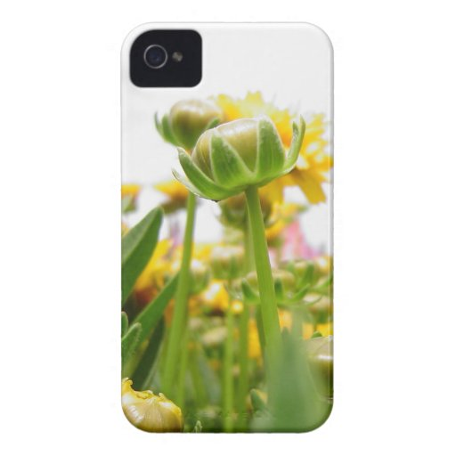 Springtime Flowers in Bloom iPhone 4 Cover
