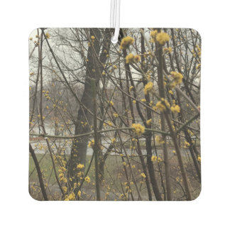 Springtime in NYC New York City Central Park Trees Air Freshener