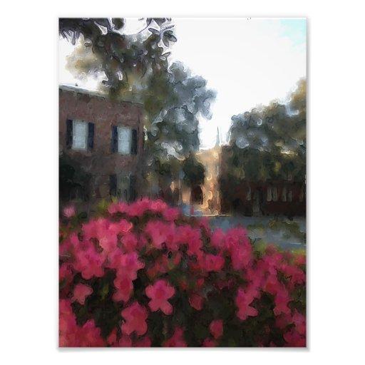 Springtime In Savannah Photo Art