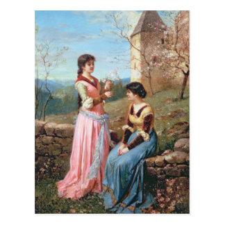 Springtime in Tuscany Postcard