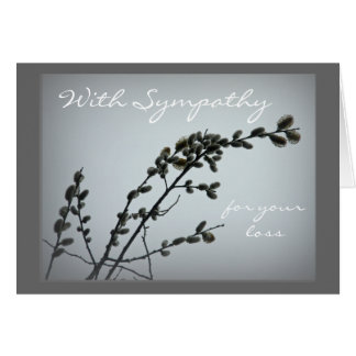 Springtime Pussy Willow Catkins Card