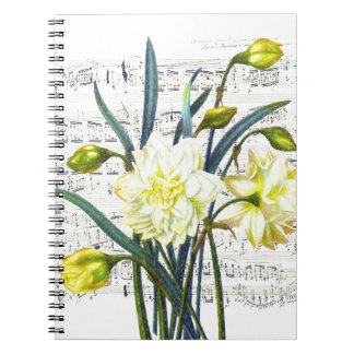 Springtime Song Notebooks