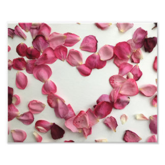 Sprinkling of rose petals photo print