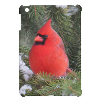 Spruce cardinal iPad mini cover