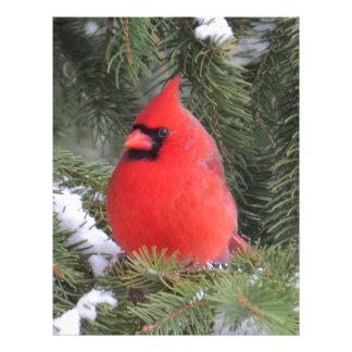 Spruce cardinal letterhead