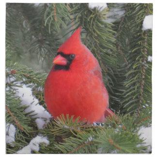 Spruce cardinal napkin