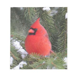 Spruce cardinal notepads
