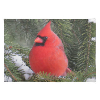 Spruce cardinal placemat
