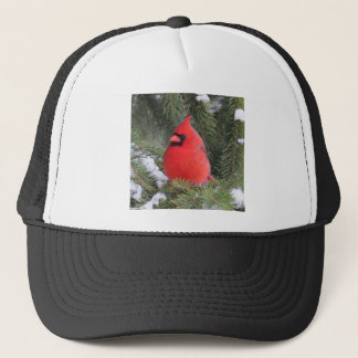 Spruce cardinal trucker hat