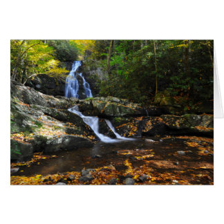 Spruce Flats Falls in Autumn Card
