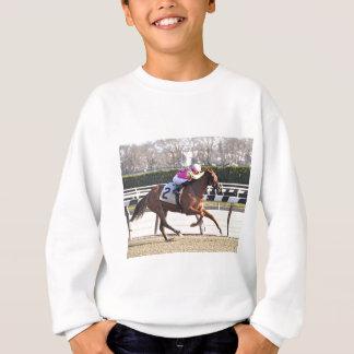 Spun Copper Sweatshirt