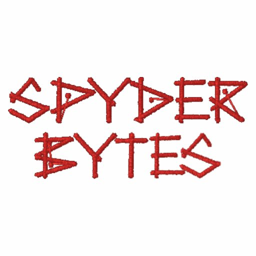 Spyder Bytes Embroidered Hoody