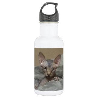 Spynx kitten 532 ml water bottle