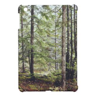 Squamish Forest Floor iPad Mini Cover