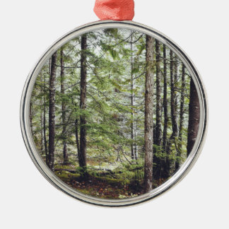 Squamish Forest Floor Silver-Colored Round Ornament