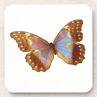 Square Butterfly Coaster