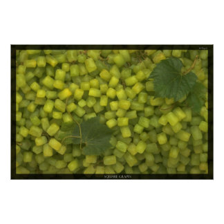 Square Grapes Poster
