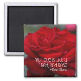Square Magnet My Love Red Rose