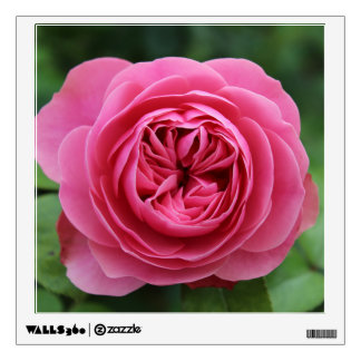 Square Roses Macro Wall Decal