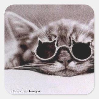 Square Sticker: Coolest Cat alive Square Sticker