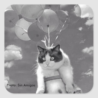 Square Sticker: Funny cat flying with Balloons Square Sticker