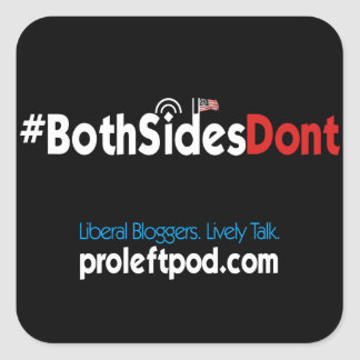 Square Stickers (4/pg) - #BothSidesDont