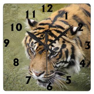 Square Tiger Clock