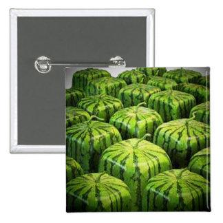 Square Watermelon Pin-Back Button
