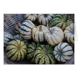 Squash Fall Harvest- Autumn Card