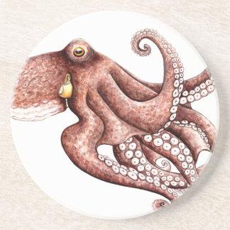 Squid - Octopus vulgaris Coaster