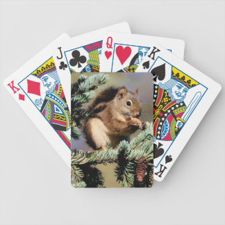 Squirell Playing Cards