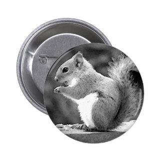 Squirrel 2 Inch Round Button