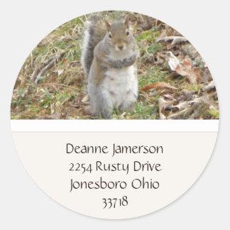 Squirrel Address Stickers