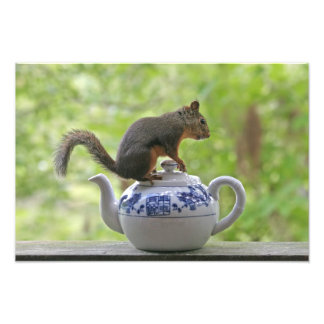 Squirrel and Teapot Photo Art
