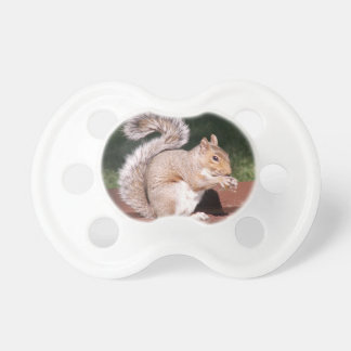 squirrel baby pacifiers