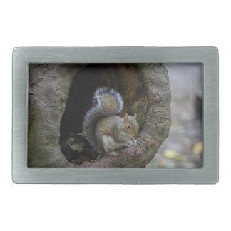 Squirrel Belt Buckle