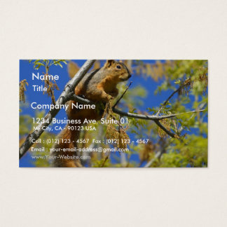 Squirrel Business Card