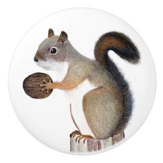 Squirrel Ceramic Knob