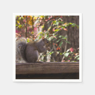 Squirrel Chow Time Disposable Napkin