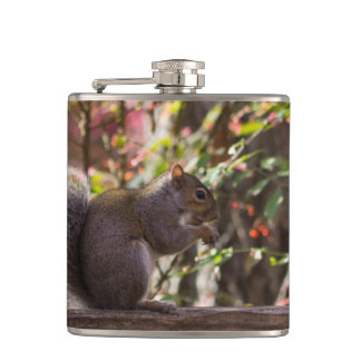 Squirrel Chow Time Hip Flask