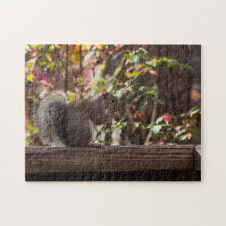 Squirrel Chow Time Jigsaw Puzzle