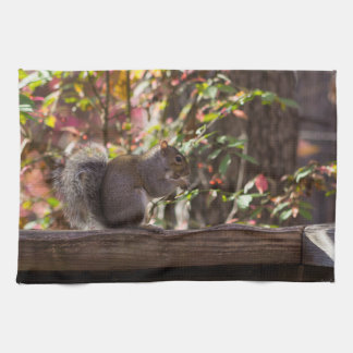 Squirrel Chow Time Kitchen Towel