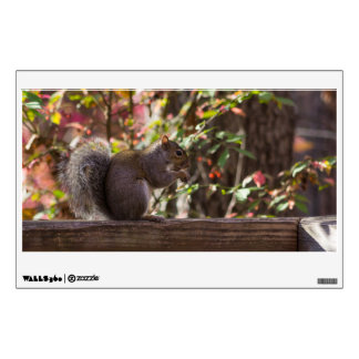 Squirrel Chow Time Wall Decal