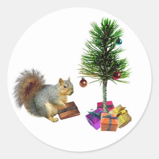 Squirrel Christmas Tree Classic Round Sticker